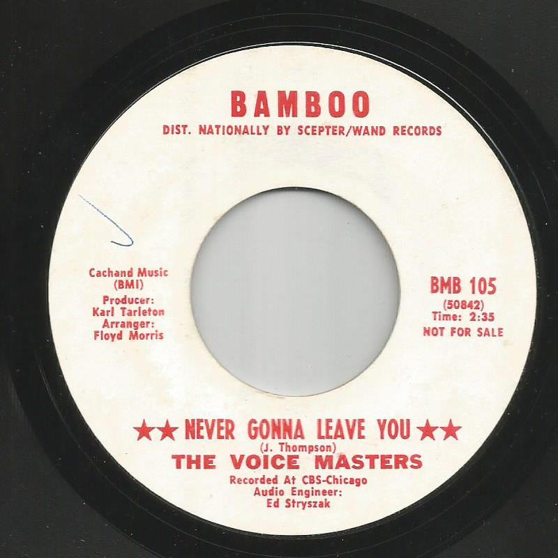 Voice Masters - Never Gonna Leave You / If A Woman Catches A Fool
